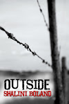 A post-apocalyptic novel