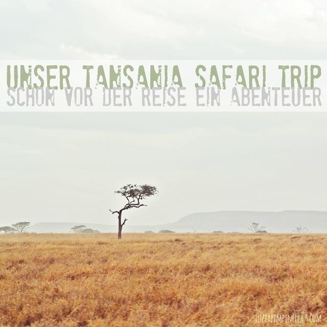 luzia pimpinella | travel tansania | vorbereitungen, foto-equipment und gesundheitsvorsorge für unsere safari