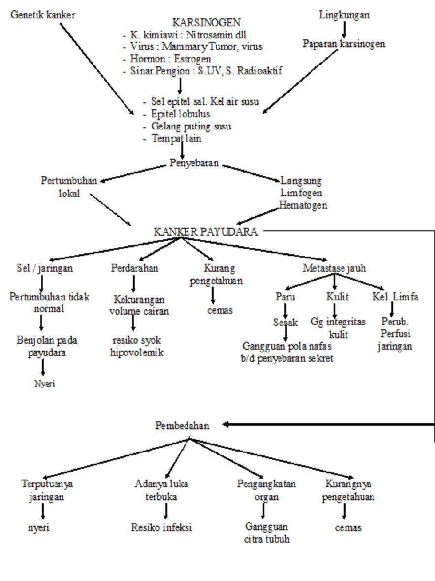 KLASIFIKASI TNM KANKER PAYUDARA (AJCC, 1992)