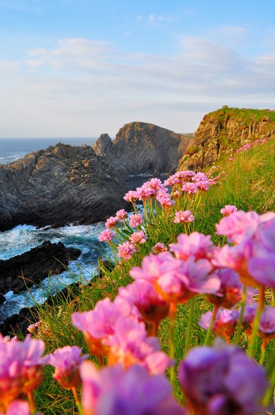 Sea Cliffs, Malin Head, Ireland