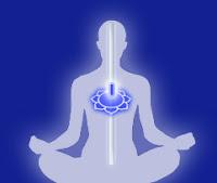 perle nel tempo progetto vajra meditazione maestro loto cuore energia seme