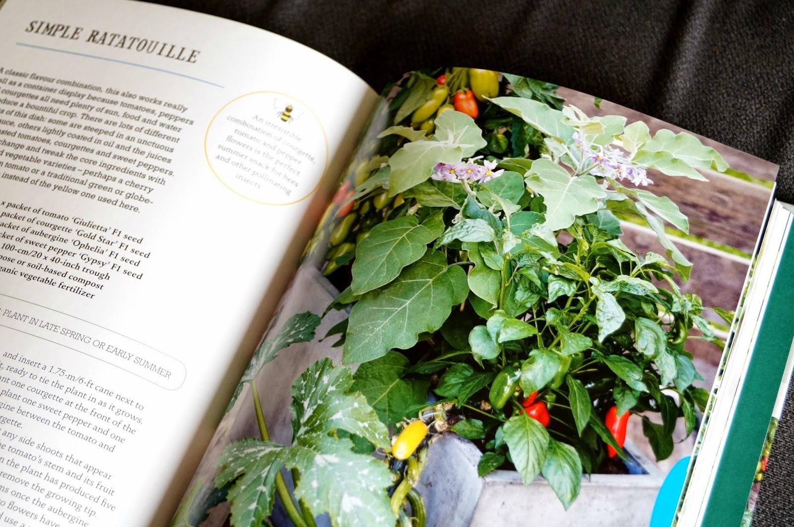 'the one-pot gourmet gardener' book (4) ~ growourown.blogspot.com
