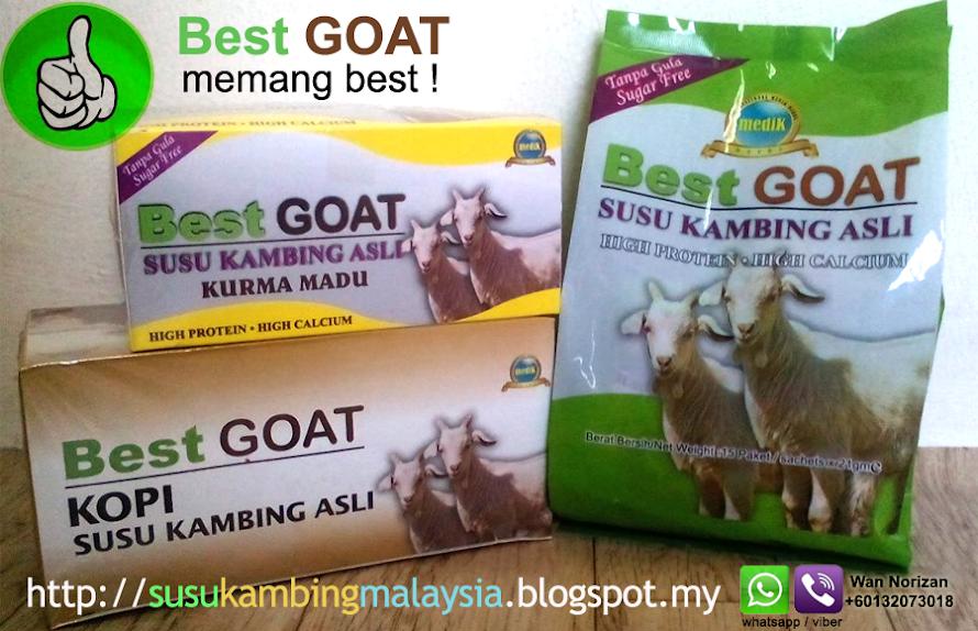 Susu Kambing Asli Best Goat