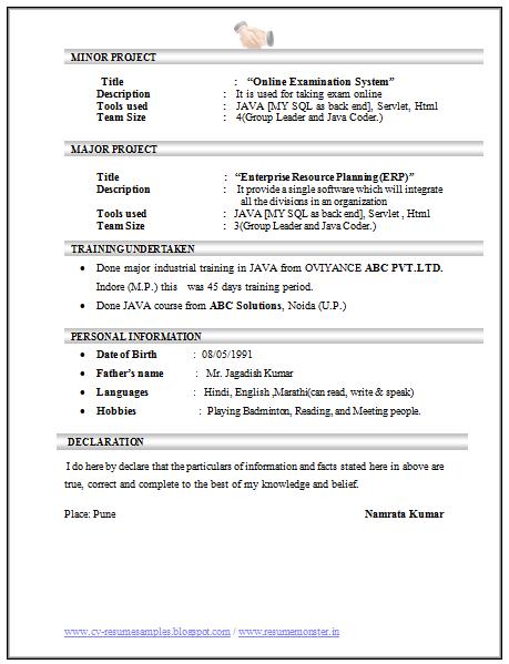 fresher testing resume format