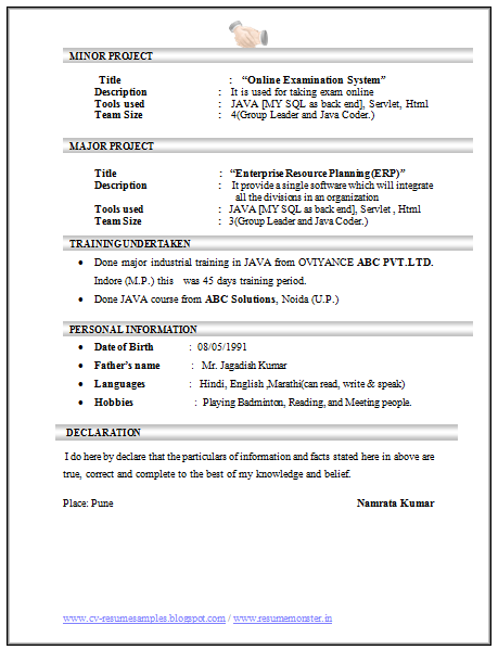 Sample Cv For Experienced Software Engineer Fresh Essays