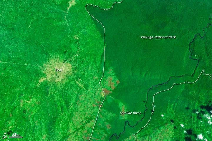 The Democratic Republic of Congo contains half of Africa's tropical forest and the second largest continuous tropical forest in the world. (Credit: NASA Earth Observatory images by Jesse Allen and Robert Simmon, using Landsat data from the USGS Global Visualization Viewer and park boundary data from Protected Planet) Click to Enlarge.