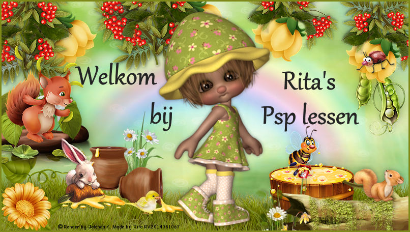 Rita's Psp Lessen
