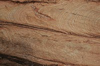 Download sedimentary rock textures at Texture Manor Library