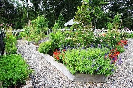 ide desain taman sayuran
