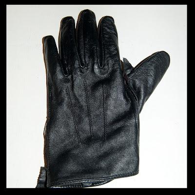 glove pet
