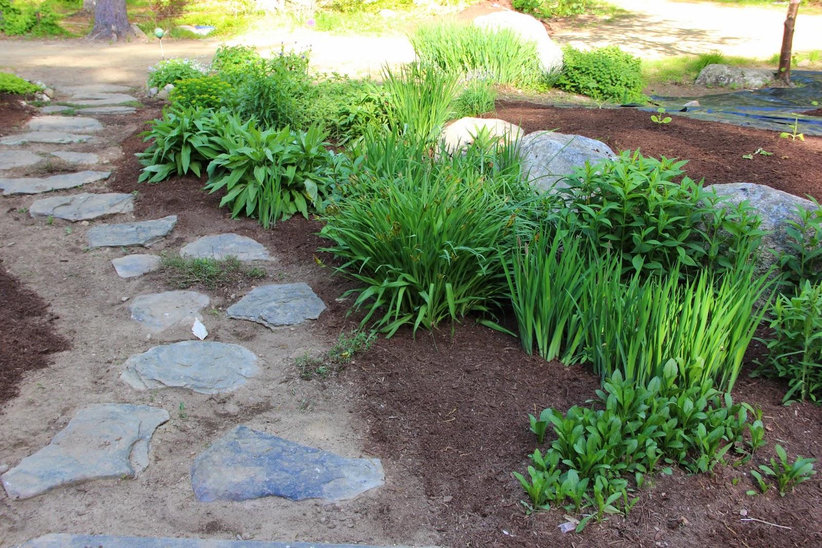 Groundhog Landscaping