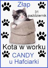 Candy z kotem