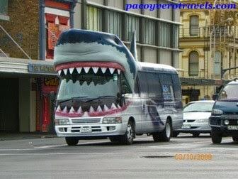 Que ver en Auckland en un dia
