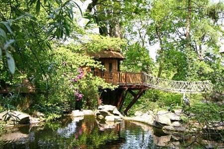 Cliffside lodge construcci n en madera for Maison en pleine nature