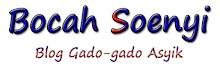 Bocah Soenyi | Blog Gado-gado
