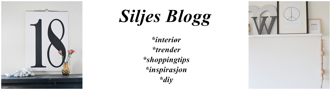 Siljes blogg