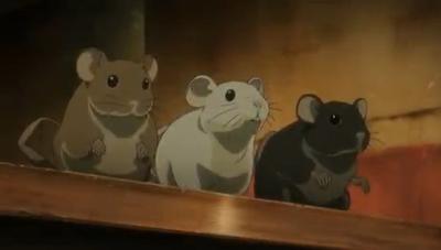 no. 6, no.6, no 6, rats