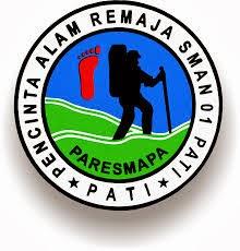 logo paresmapa
