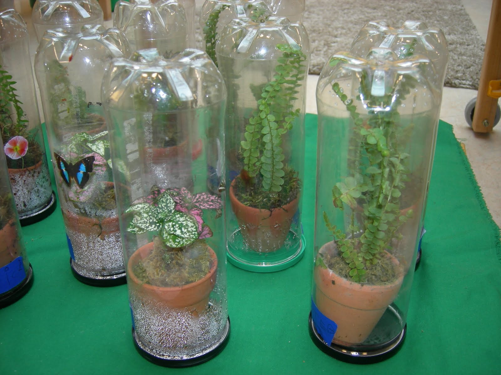 How to Recycle: Another Upcycling and Recycling Ideas!