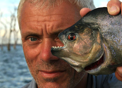 Jeremy Wade River Monsters Piranha