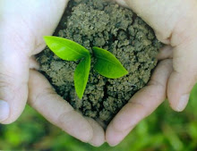 Save Our Earth ♥