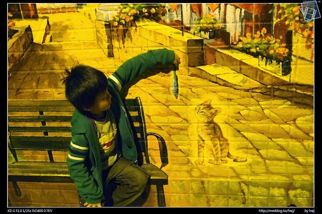 2013-11-24 夜晚的虎尾-屋頂上的貓(cat on the roof)  -虎尾頂溪里