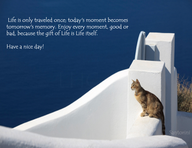 Quotes that make you think december 2012 for Hotel luxury quotes