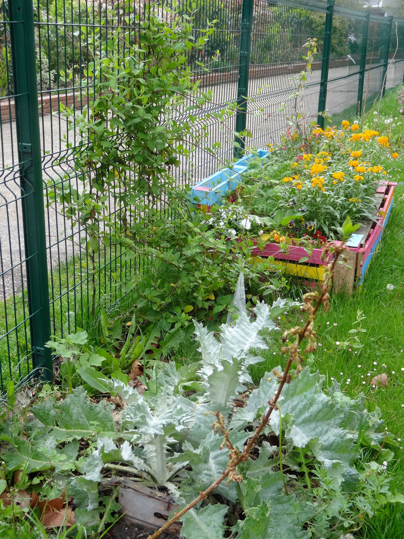 Le jardin des fabriques plantations au jardin samedi 5 for Plantations jardin