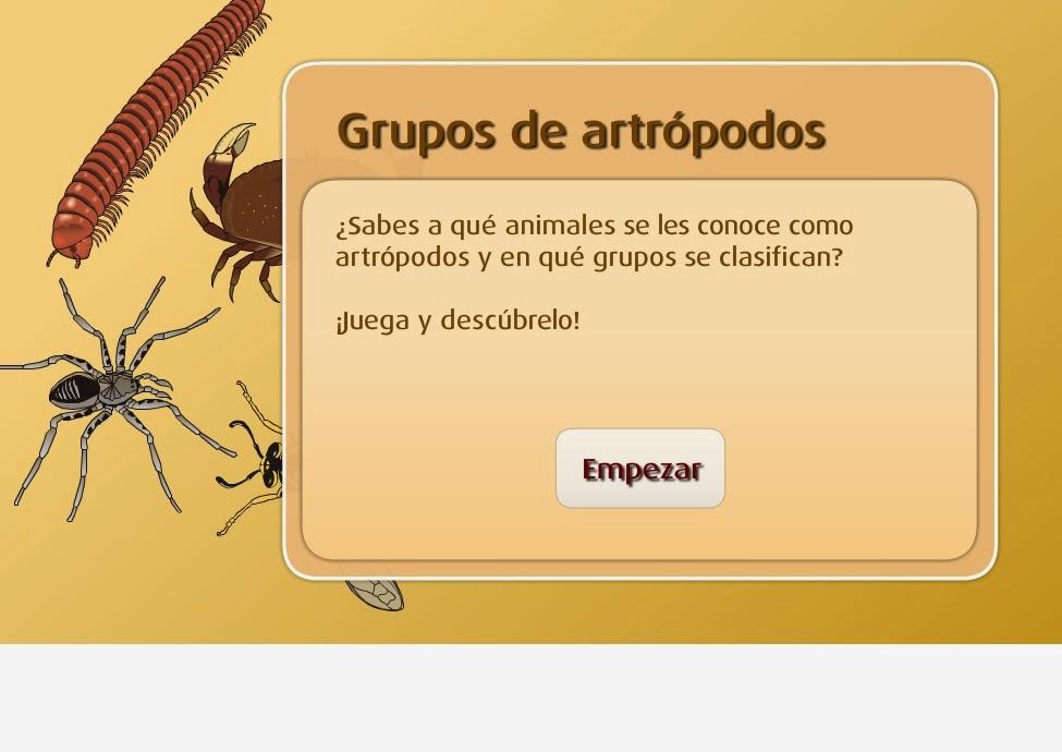 http://www.primaria.librosvivos.net/archivosCMS/3/3/16/usuarios/103294/9/217_Cono5EP_Los_artropodos/frame_prim.swf
