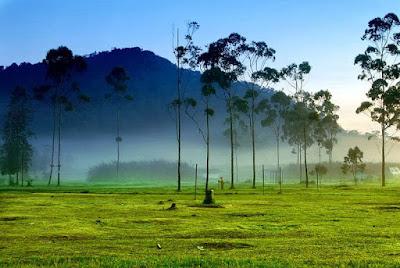Wisata Alam Ranca Upas Ciwidey