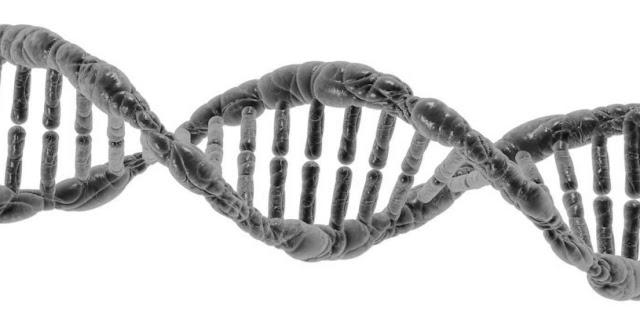 ADN y biologia