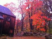 New England Fall...