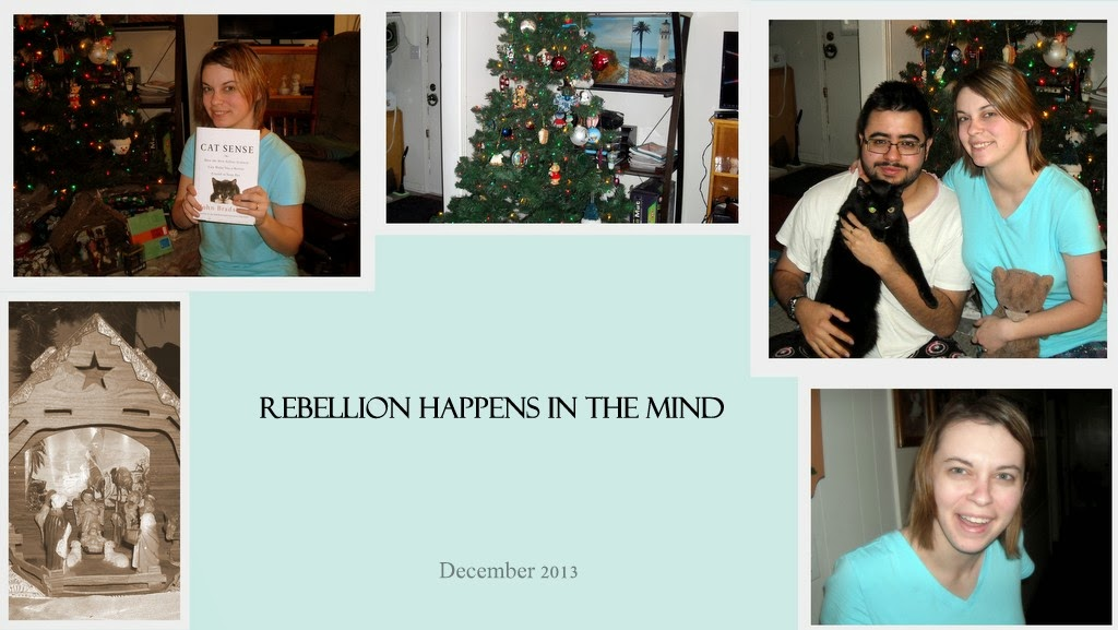Rebellion Happens in the Mind
