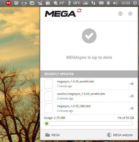 MEGAsync Linux