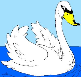 Ilustración del cisne de perfil