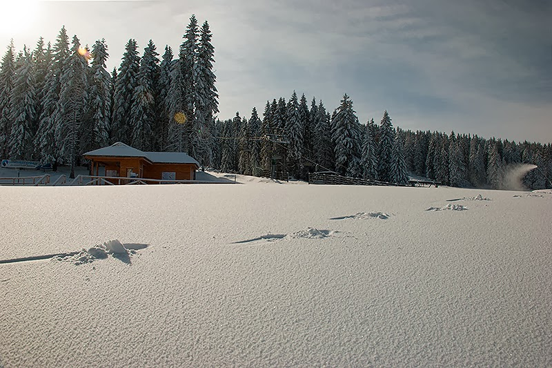 Moji tragovi u snegu