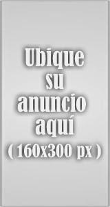 Banner Izq 2 160x300