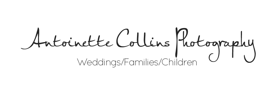 Antoinette Collins Photography