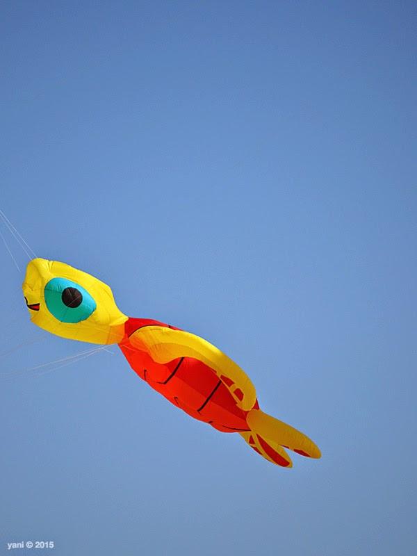baby turtle kite