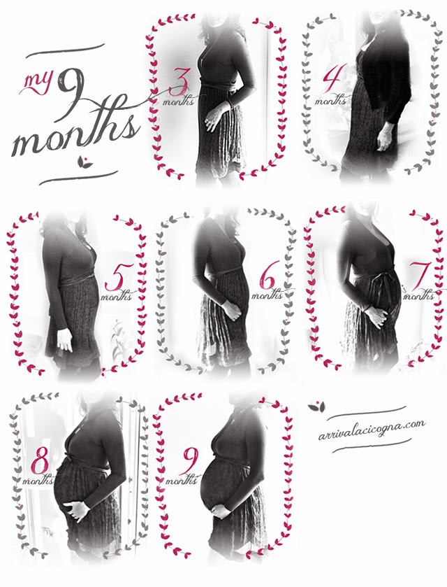 my nine months of pregnancy month by month
