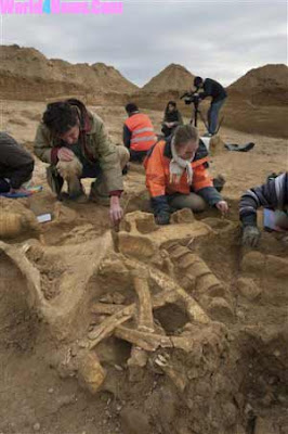 mammoth skeleton found in france