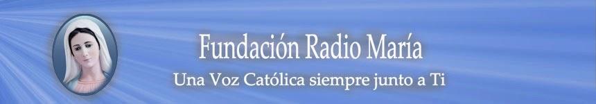 Fundación Radio María - Noticias