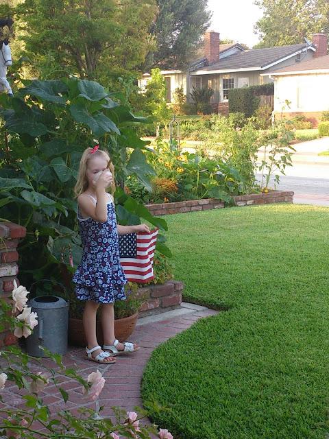 grow pumpkins in small yard