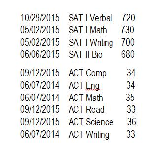 who grades sat essays