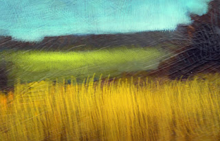 close up, of the grass in jumping fox painting.