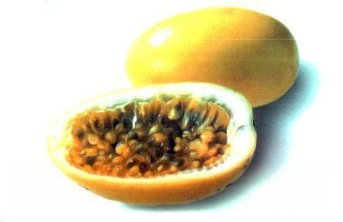Granada Verde Fruta