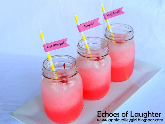 slurpee drink maker instructions
