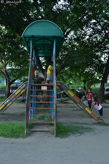 the slide in the playground