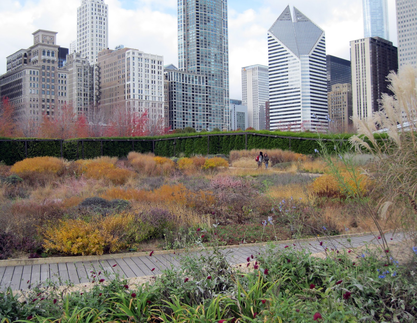 the lurie garden in fall the hortiholic