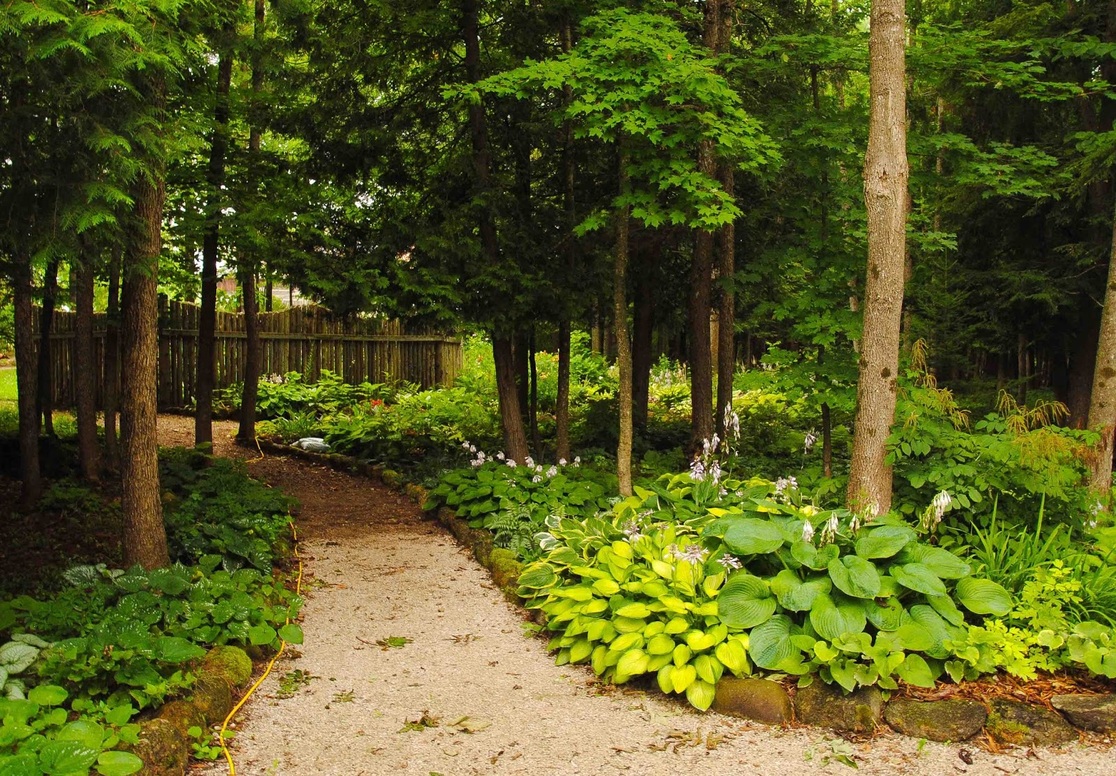 Tiny woodland garden ideas photograph seasons in the valle for Woodland garden designs